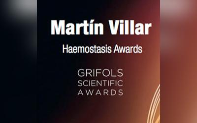 Martin Villar Awards