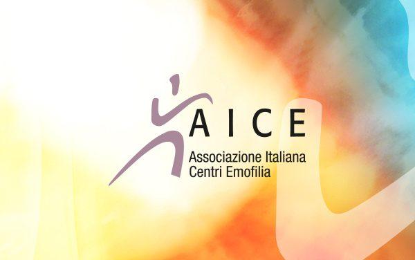 Votazione: nuovo statuto AICE