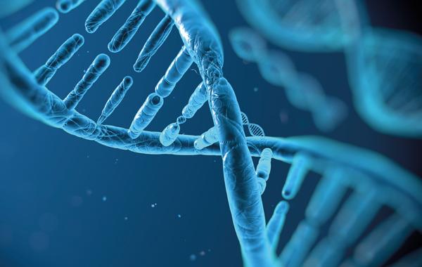 Terapia Genica in Emofilia A: i Primi Risultati con Follow-up Prolungato