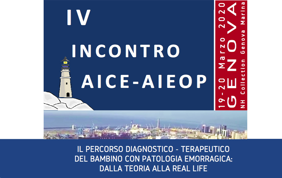 IV Incontro AICE - AIEOP