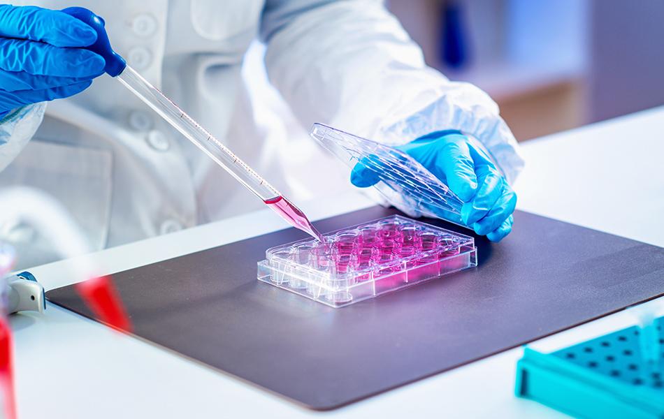 Aggiornamento dati dei laboratori per la diagnosi molecolare di emofilia e dei centri pubblici e privati convenzionati per la diagnosi genetica pre-impianto per emofilia